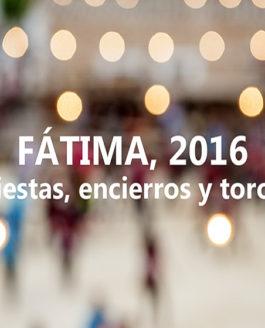 Protegido: Fátima, 2016